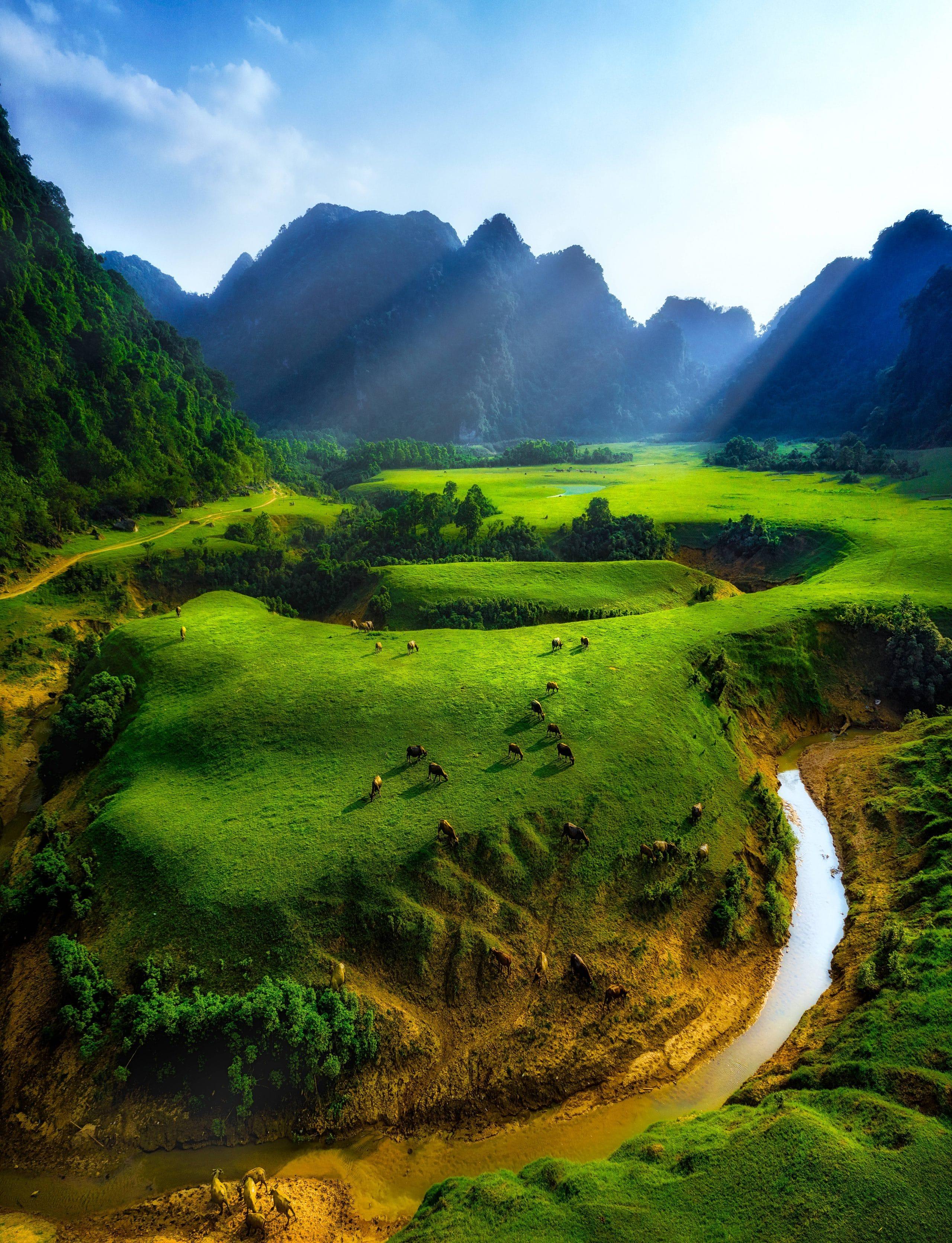 254 – Thảo Nguyên Xanh Đồng Lâm – Nguyễn Minh Tiến